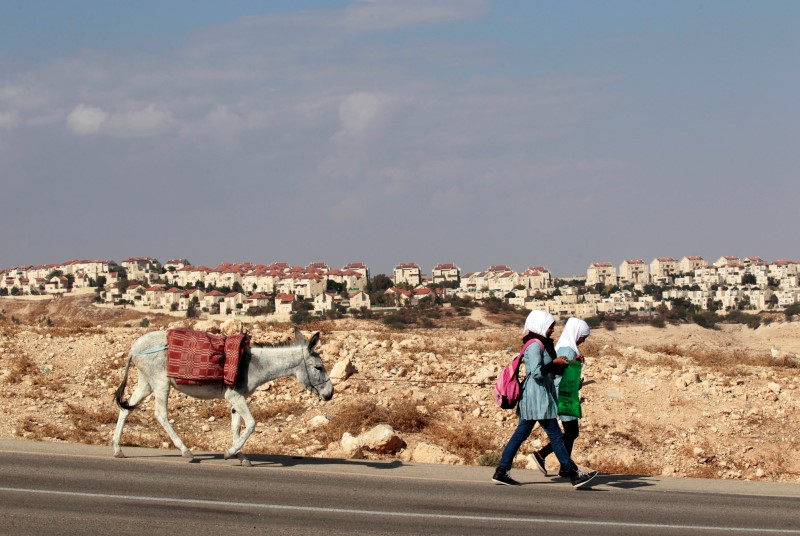 Palestinian schoolgirls walk with a donkey as the West Bank Jewish settlement of Maale Adumim is seen in the background
