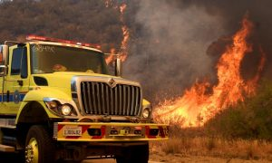 Fire fighters battling Sand Fire in California - wildfire