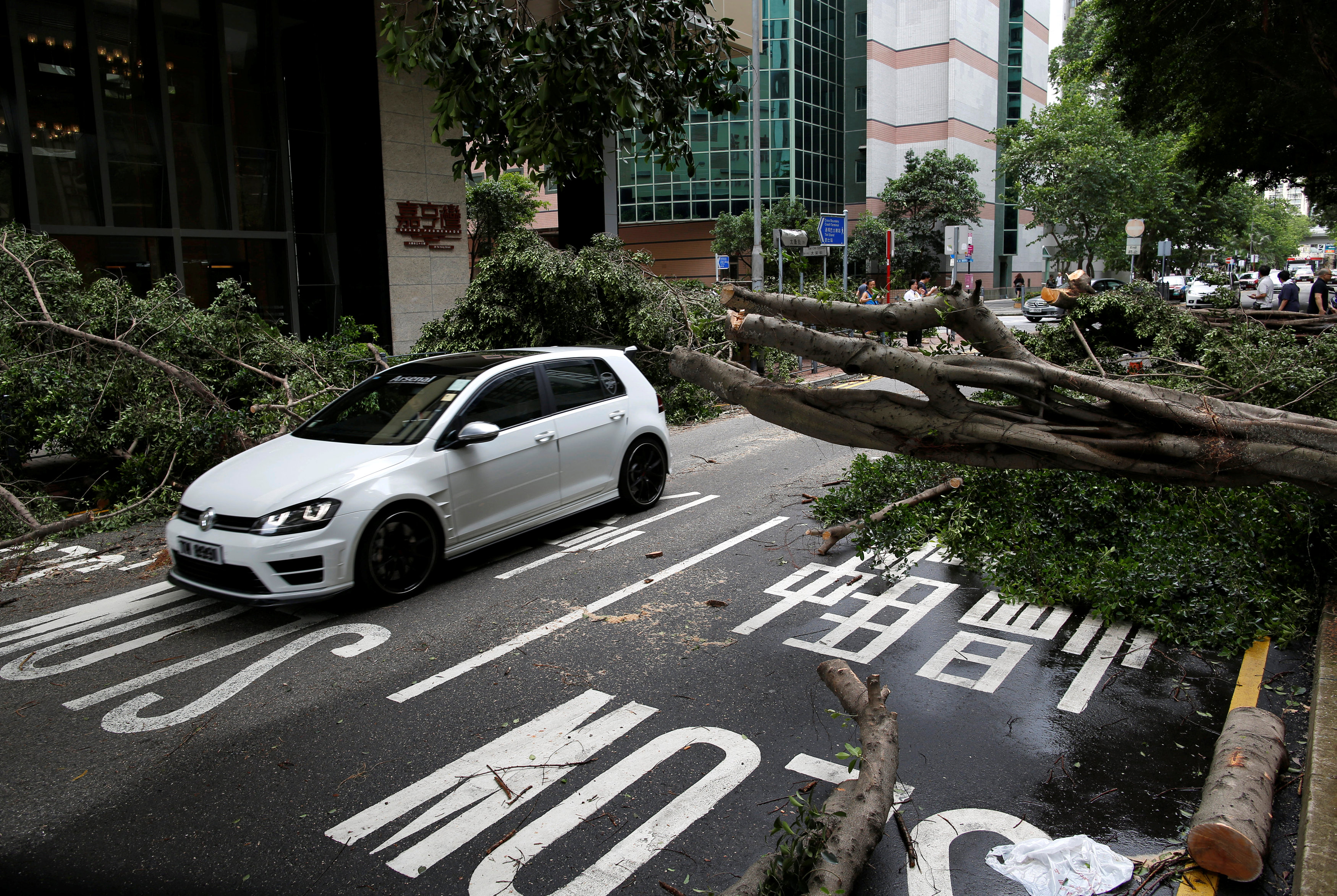 Typhoon Nida uproots trees