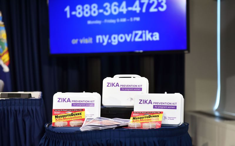 Zika prevention kit for pregnant women