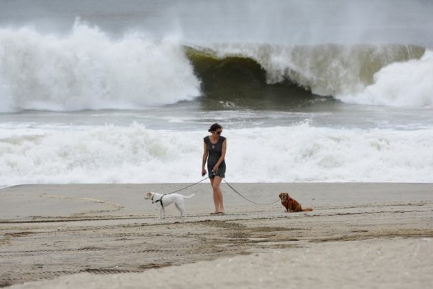 A woman walks her dog at Rockaway Beach in Queens, New York on Labor Day while high waves reached the shore due to post-tropical cyclone Hermine which tracked off the east coast of the U.S.