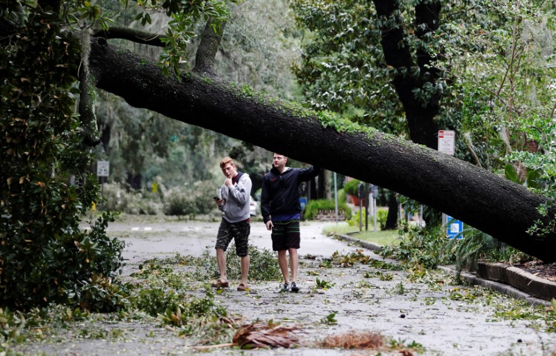 osh Rhodes (L) and Tim Rossland look at a fallen tree in Telfair Square after Hurricane Matthew passed through in Savannah, Georgia