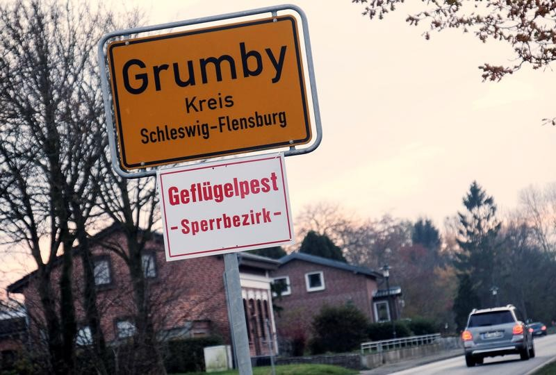 "A car drives past the town sign in the northern German village of Grumby, Germany, with the ""Bird Flu - off limits area"" warning notice"