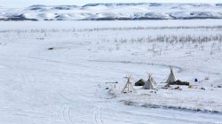 Tipis are seen on the outskirts of the protest camp. REUTERS/Terray Sylvester