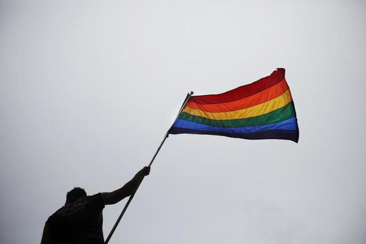 File Photo: A man holds a flag as he takes part in an annual Gay Pride Parade in Toronto June 28, 2009. REUTERS/Mark Blinch