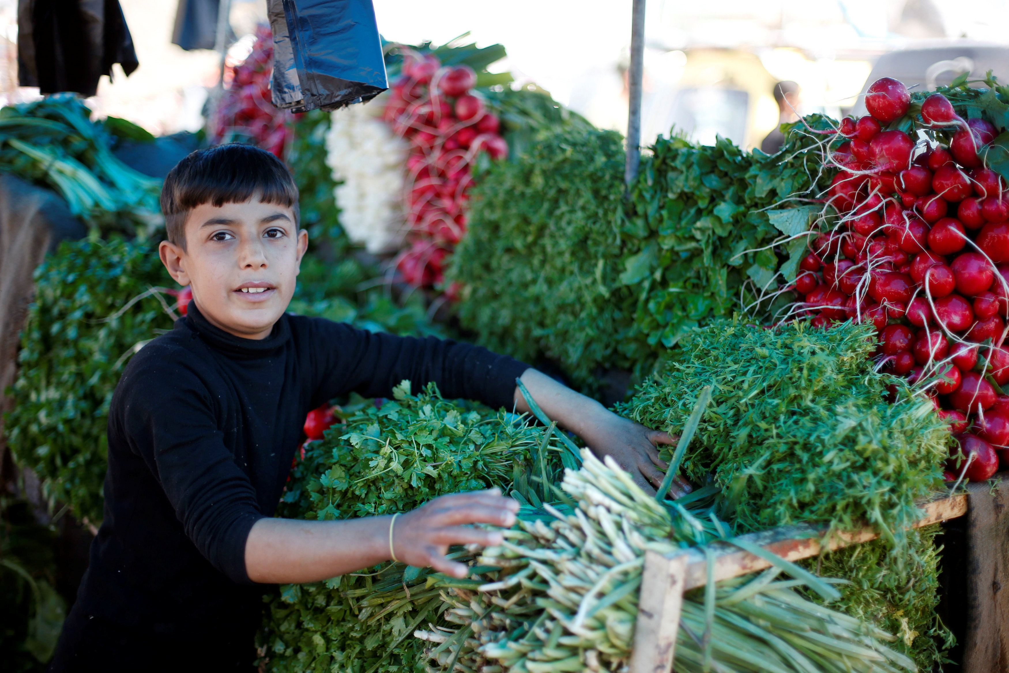 Falah, 11, sells vegetables and fruits in a market in eastern Mosul, Iraq April 20, 2017. REUTERS/ Muhammad Hamed