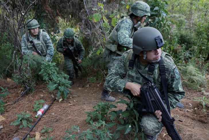 Soldiers stand guard as they destroy poppies during a military operation in the municipality of Coyuca de Catalan, Mexico
