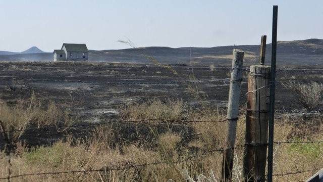 FILE PHOTO: A house stands amid blackened range where the Lodgepole Complex fire jumped the Montana 200 highway, near Mosby, Montana, U.S. July 23, 2017. Bureau of Land Management/Handout via REUTERS.