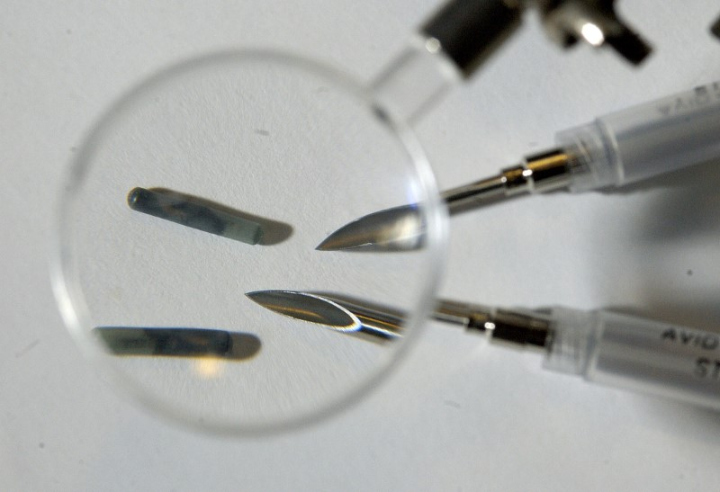 Tiny radio frequency identification (RFID) computer chips with the needles used to implant them under the skin are pictured in New York January 4, 2006. REUTERS/Chip East