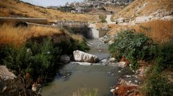 Sewage flows in Kidron Valley, on the outskirts of Jerusalem July 6, 2017. Picture taken July 6, 2017.