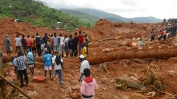 270 bodies recovered from Sierra Leone mudslide: mayor