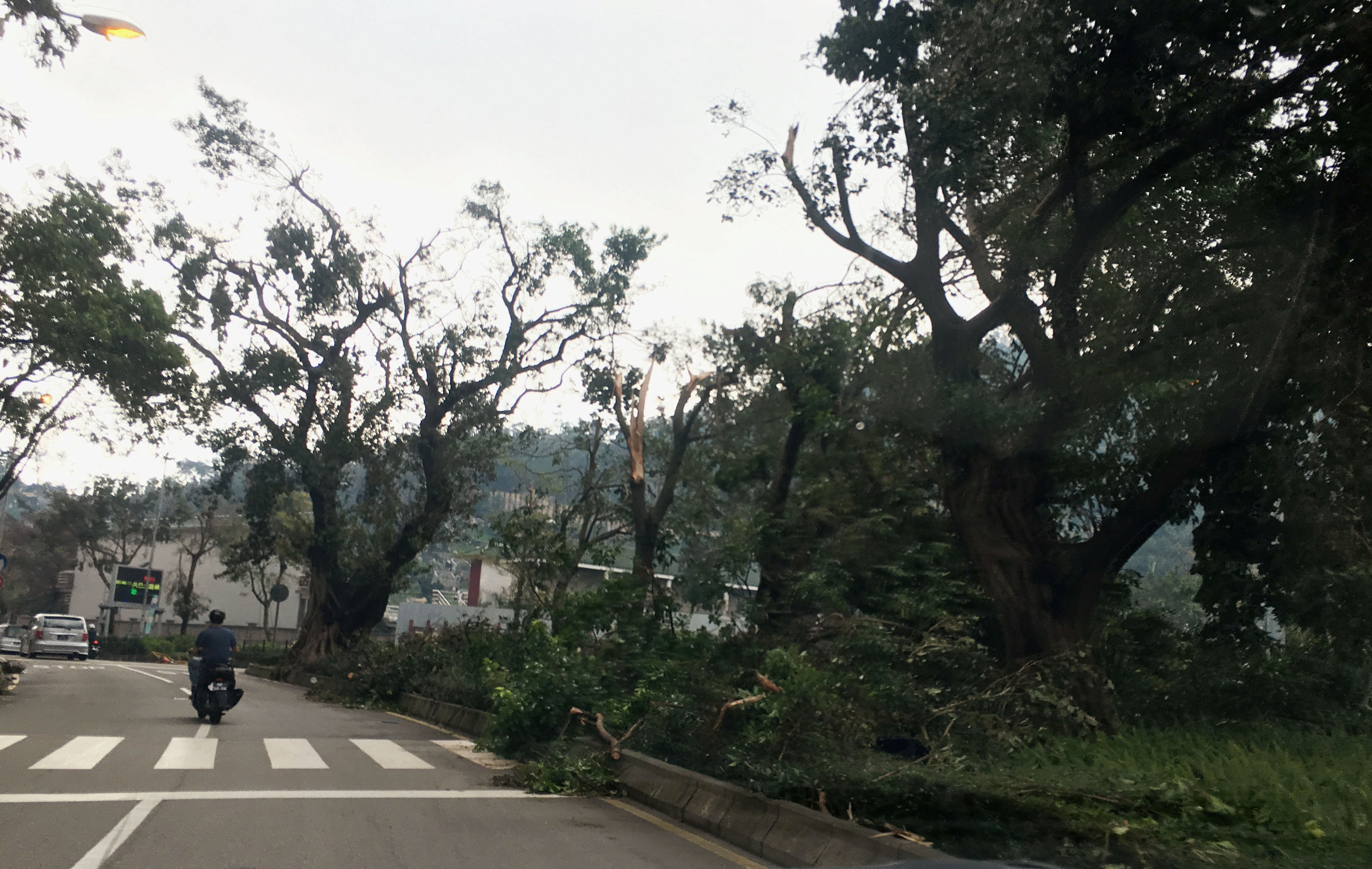Fallen trees and debris are seen on a road following Typhoon Hato in Macau, China, August 24, 2017 in this picture obtained from social media. Karen Yung via REUTERS