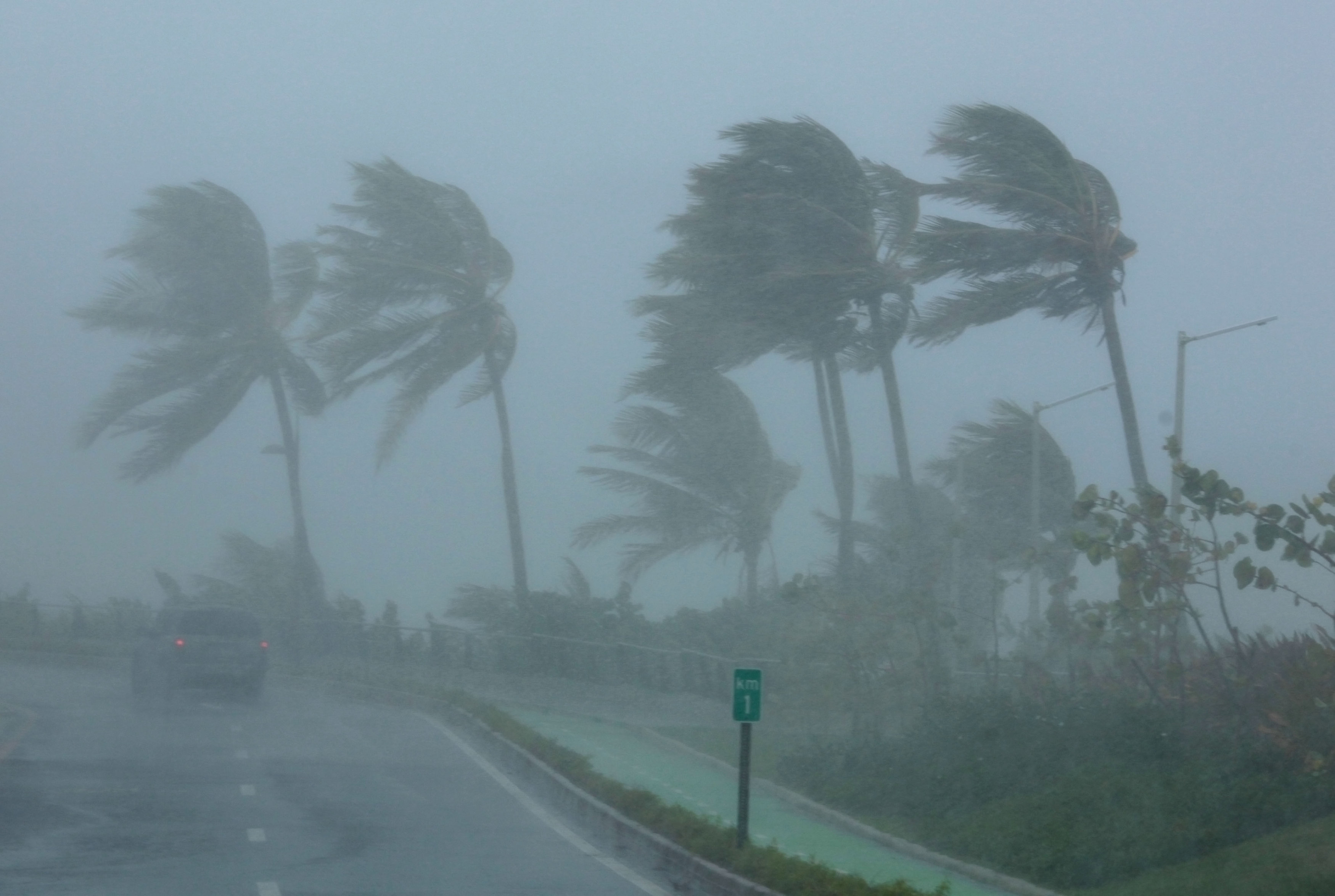Palm trees bend in the wind as Hurricane Irma slammed across islands in the northern Caribbean on Wednesday, in San Juan, Puerto Rico September 6, 2017. REUTERS/Alvin Baez
