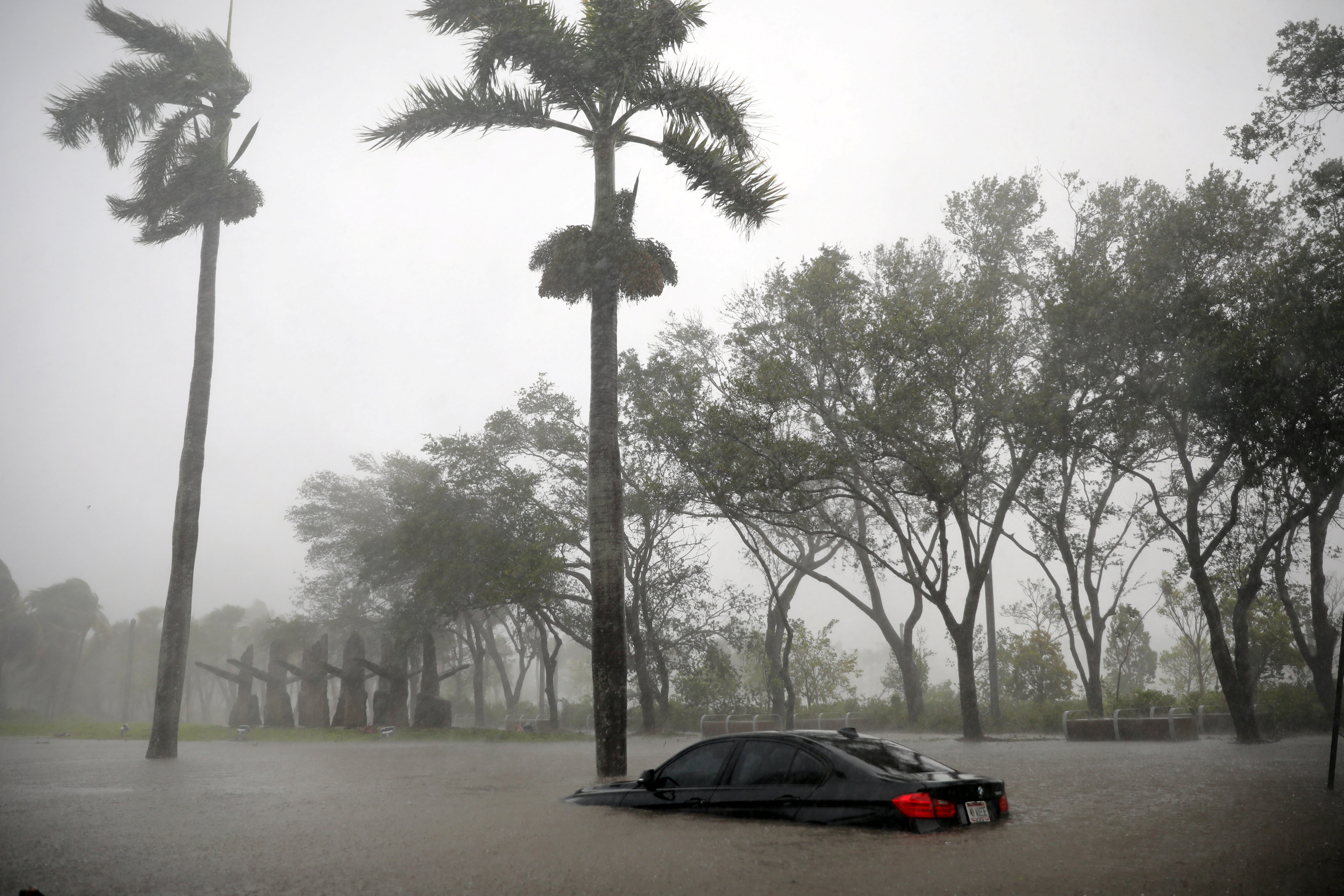 A partially submerged car is seen at a flooded area in Coconut Grove as Hurricane Irma arrives at south Florida, in Miami, Florida, U.S., September 10, 2017.