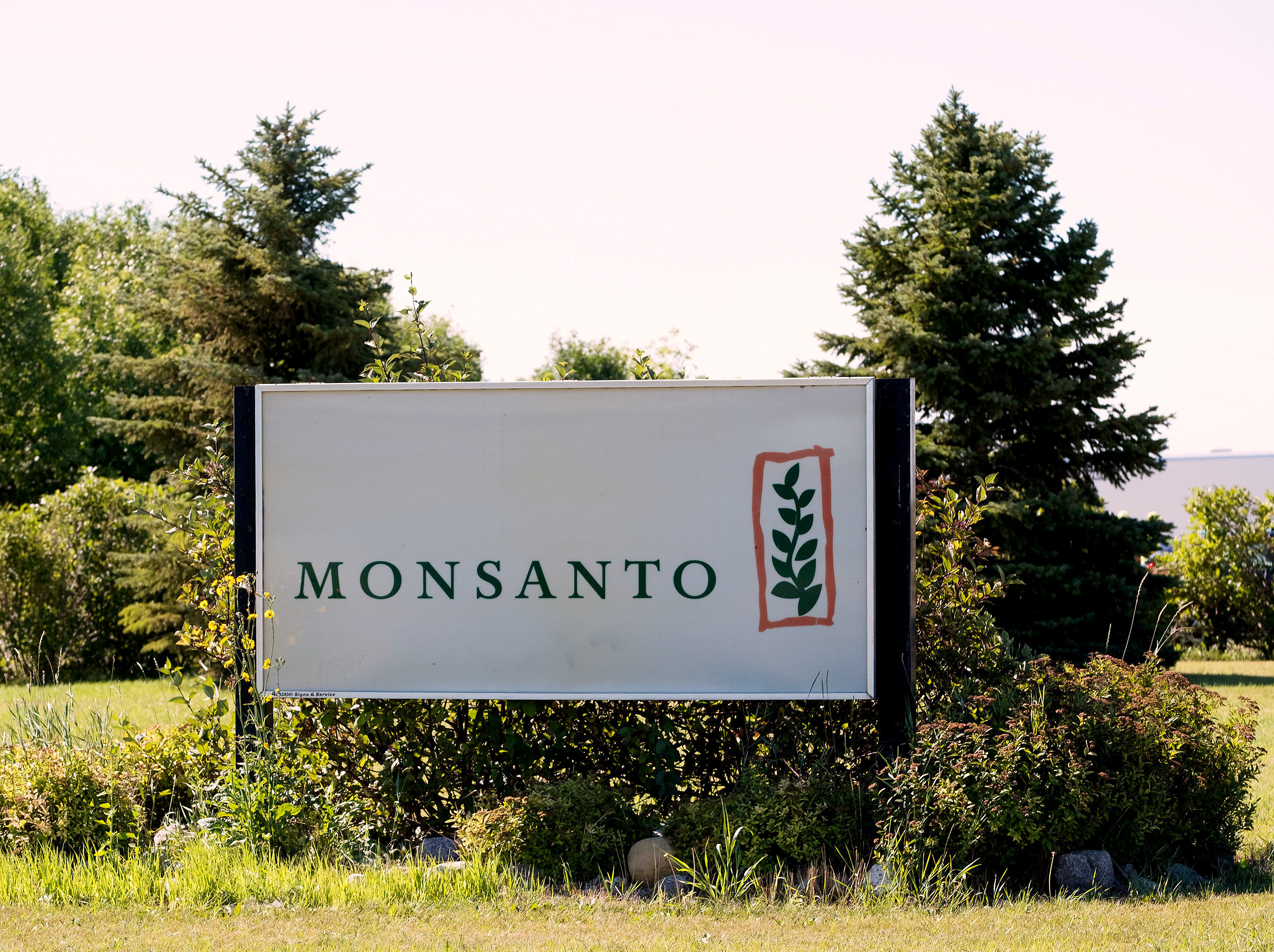 Monsanto's research farm is pictured near Carman, Manitoba, Canada on August 3, 2017.