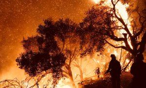 Firefighters knock down flames as they advance on homes atop Shepherd Mesa Road in Carpinteria, California, U.S. December 10, 2017. REUTERS/Mike Eliason/Santa Barbara County Fire