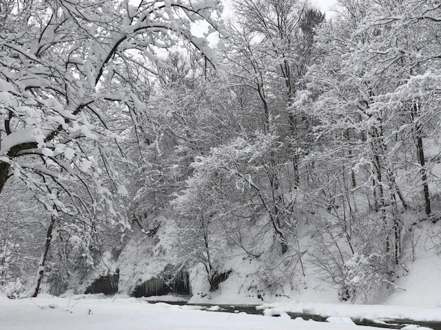 Trees are seen after the record snowfall in Erie, Pennsylvania, U.S., December 26, 2017 in this picture obtained from social media. Picture taken December 26, 2017.