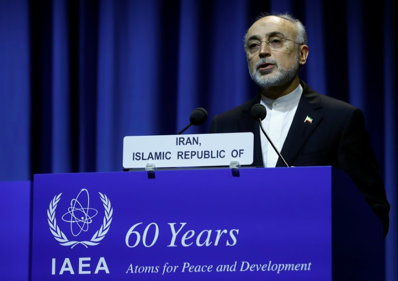 Head of Iran's Atomic Energy Organization Ali-Akbar Salehi attends the opening of the International Atomic Energy Agency (IAEA) General Conference at their headquarters in Vienna, Austria September 18, 2017.