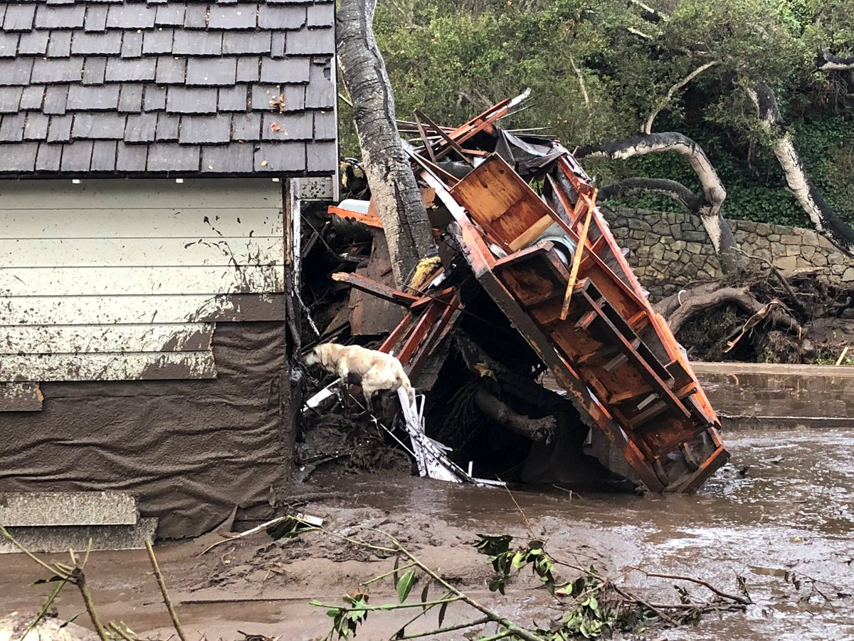 A search dog looks for victims in damaged homes after a mudslide in Montecito, California, U.S. in this photo provided by the Santa Barbara County Fire Department, January 9, 2018.