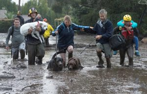 Emergency personnel evacuate local residents and their dogs through flooded waters after a mudslide in Montecito, California, U.S. January 9, 2018. Kenneth Song/Santa Barbara