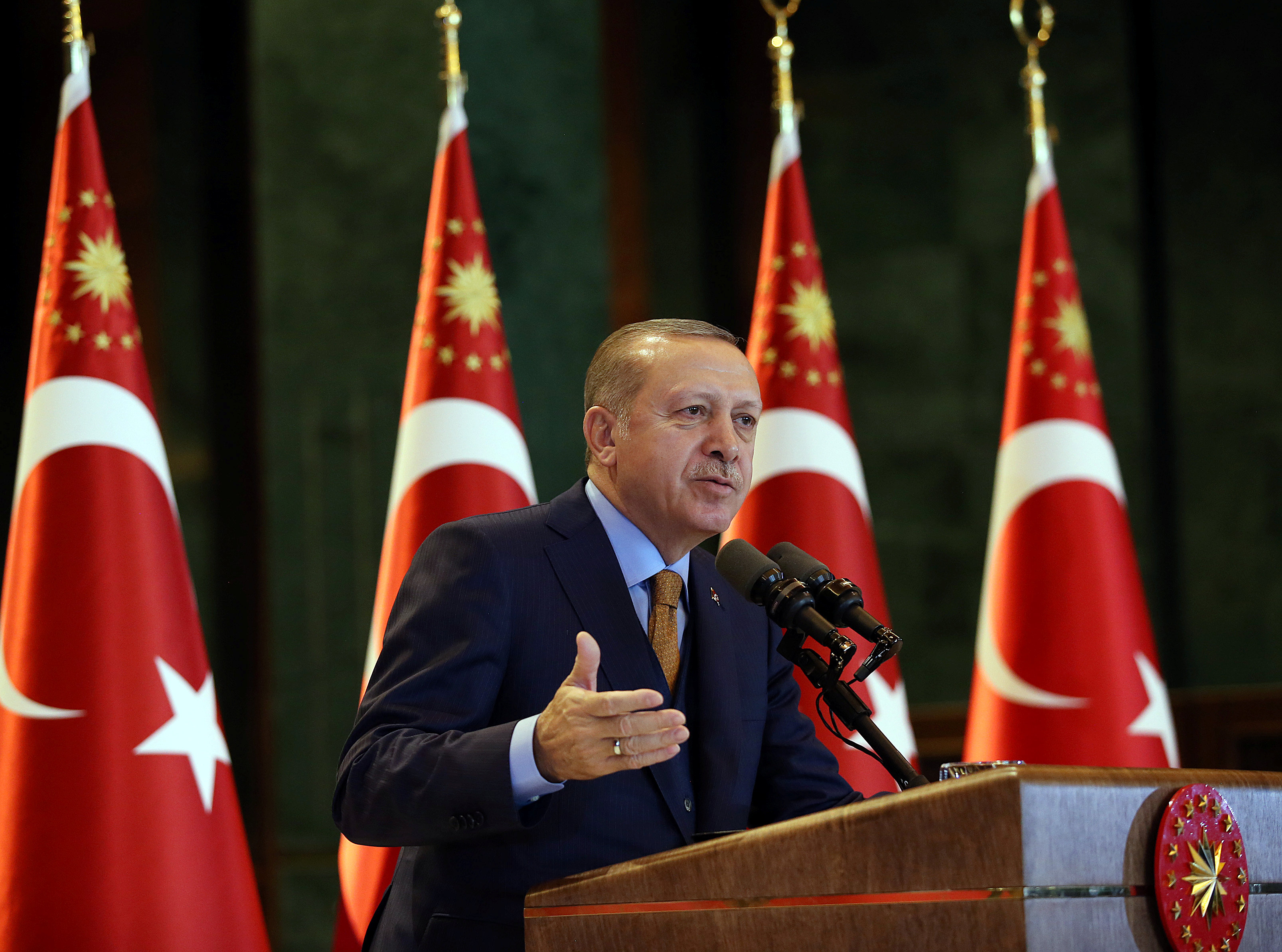 Turkish President Tayyip Erdogan speaks during a meeting at the Presidential Palace in Ankara, Turkey,