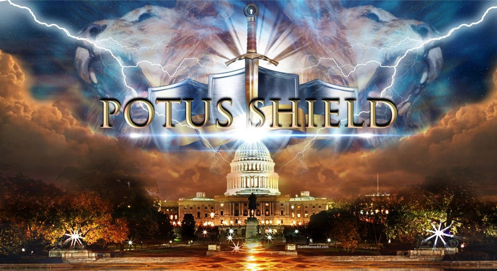 Potus-Shield