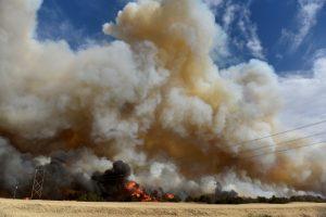 The Rhea fire burns through a grove of red cedar trees near Seiling, Oklahoma, U.S. April 17, 2018. REUTERS/Nick Oxford