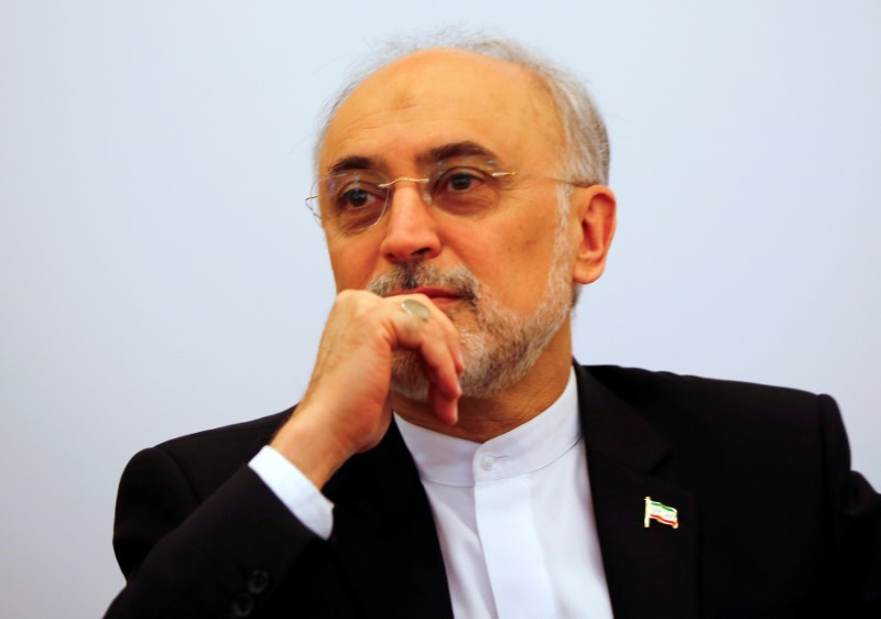 "FILE PHOTO: Head of the Iranian Atomic Energy Organization Ali Akbar Salehi attends the lecture ""Iran after the agreement: Hopes & Concerns"" in Vienna, Austria, September 28, 2016. REUTERS/Leonhard Foeger"