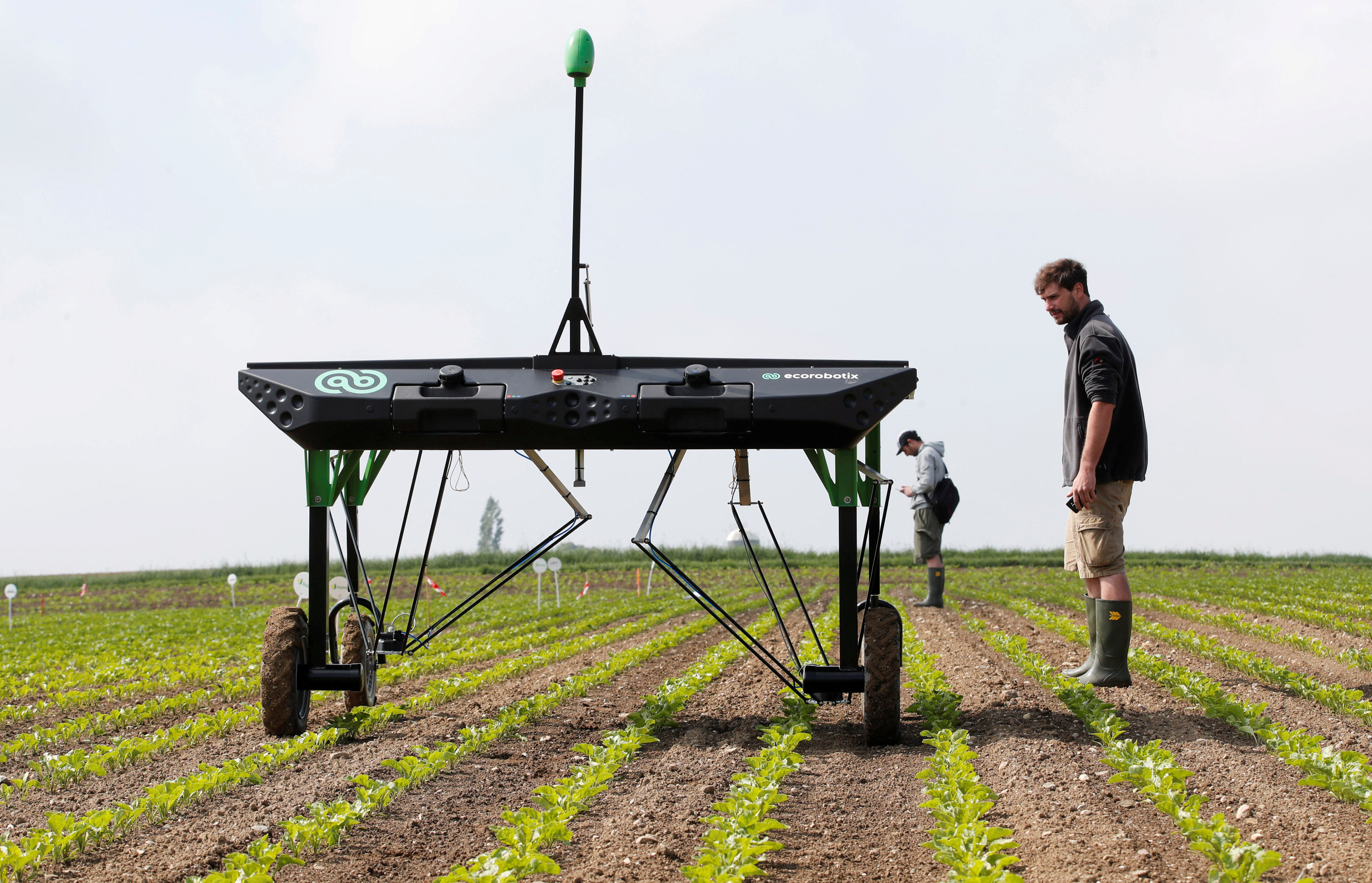 The prototype of an autonomous weeding machine by Swiss start-up ecoRobotix is pictured during tests on a sugar beet field near Bavois, Switzerland May 18, 2018. REUTERS/Denis Balibouse