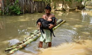 A man carries his goat as he wades through a flooded area at a village in Nagaon district, in the northeastern state of Assam, India, June 19, 2018. REUTERS/Anuwar Hazarika