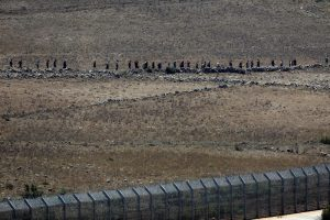 People walk towards the border fence between Israel and Syria from its Syrian side as it is seen from the Israeli-occupied Golan Heights near the Israeli Syrian border July 17, 2018. REUTERS/Ronen Zvu