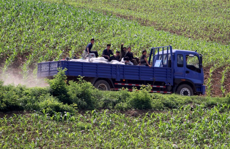 FILE PHOTO: North Koreans take a truck through a path amongst the fields, along the Yalu River, in Sakchu county, North Phyongan Province, North Korea, June 20, 2015. REUTERS/Jacky Chen/File Photo