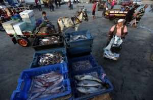 Boxes containing fish are displayed for sale at a market in Gaza City August 15, 2018. REUTERS/Ibraheem Abu Mustafa
