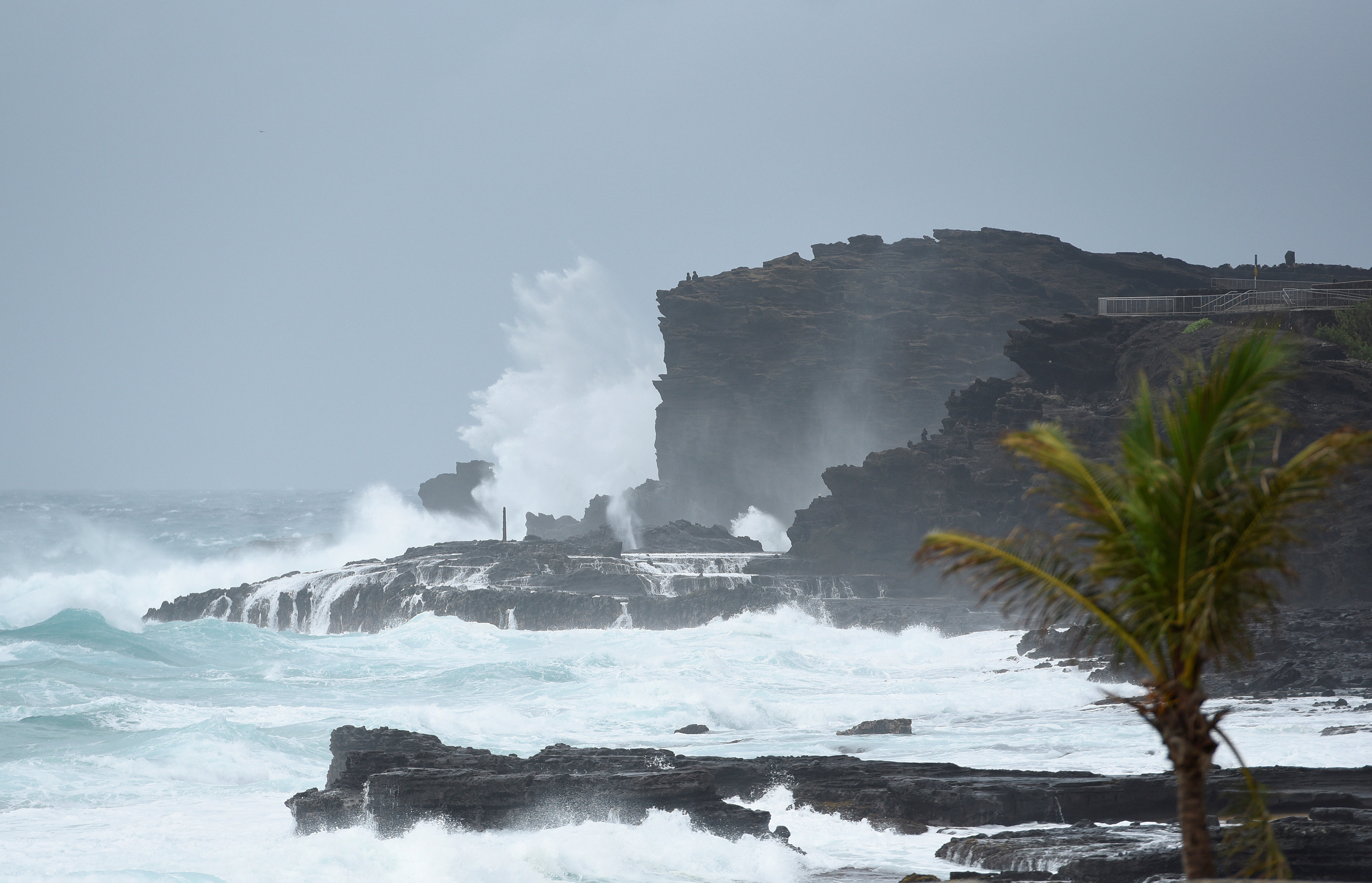 FILE PHOTO: Large waves crash against the shoreline on the east side of Oahu as Hurricane Lane approaches Honolulu, Hawaii, U.S. August 24, 2018. REUTERS/Hugh Gentry