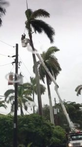 Maintenance crew work near power lines during an outage after Storm Gordon descended on Miami Beach, Florida, U.S., September 3, 2018 in this still image taken from a video obtained from social media. @ZwebackHD/via REUTERS