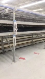 Empty shelves are seen at a supermarket as residents prepare for Storm Florence's descent in Columbia, South Carolina, U.S., September 10, 2018, in this still image taken from a video obtained from social media. @missgil/via REUTERS