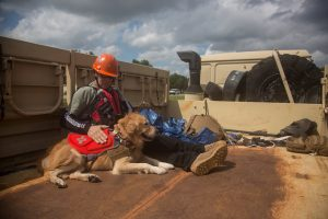 Michael Ziolkowski, a Field Operations Supervisor for the National Disaster Response K-9 Unit and his partner, Morty, are transported to support relief efforts in the aftermath of Hurricane Florence in Spring Lake, North Carolina, September 16, 2018. Spc. Austin T. Boucher/U.S. Army/Handout via REUTERS