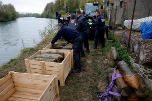 Deminers from a bomb-disposal unit place in boxes unexploded shells recovered in the Meuse River at Sivry-sur-Meuse, close to WWI battlefields, near Verdun, France, October 24, 2018 before the centenial commemoration of the First World War Armistice Day. REUTERS/Pascal Rossignol