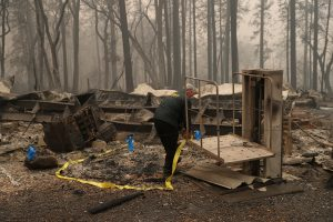 A Butte County Sheriff deputy places yellow tape at the scene where human remains were found during the Camp fire in Paradise, California, U.S. November 10, 2018. REUTERS/Stephen Lam