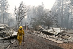 A Cal Fire firefighter walks between homes destroyed by the Camp Fire in Paradise, California, U.S., November 13, 2018. REUTERS/Terray Sylvester