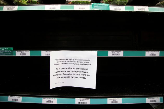 FILE PHOTO: Romaine lettuce has been taken off the shelf for fear of an E. coli outbreak at this grocery store in Toronto, Ontario, Canada November 21, 2018. REUTERS/Carlos Osorio