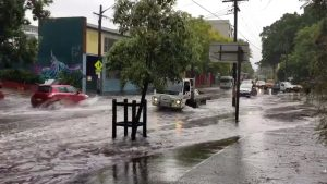 Vehicles drive on a flooded street in Sydney, New South Wales, Australia November 28, 2018 in this still image taken from a video obtained from social media. @DeeCee451/via REUTERS