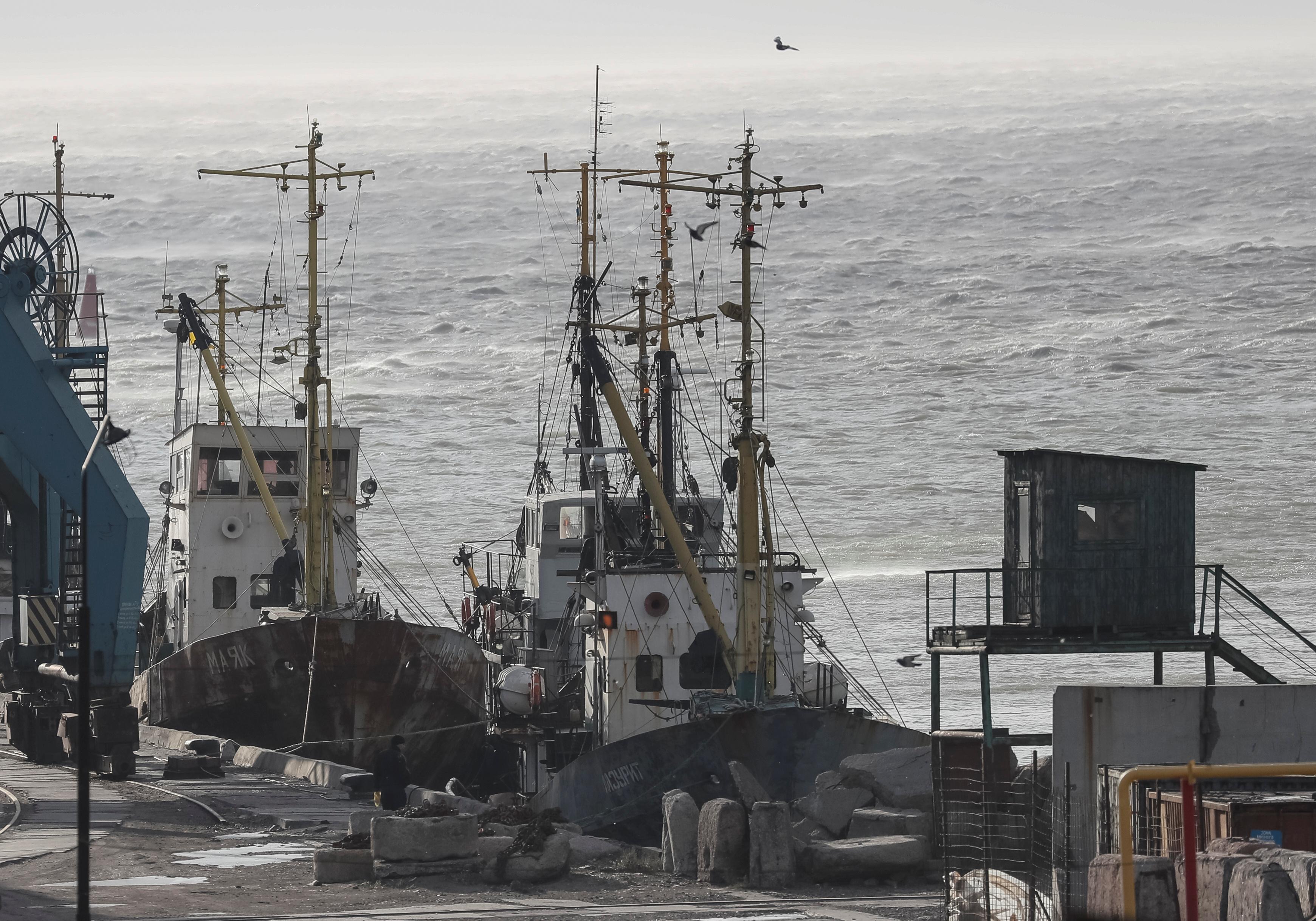 Ships are seen in the Azov Sea port of Berdyansk, Ukraine November 30, 2018. REUTERS/Gleb Garanich