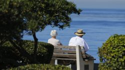 FILE PHOTO: An elderly couple looks out at the ocean as they sit on a park bench in La Jolla, California November 13, 2013. REUTERS/Mike Blake