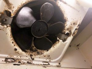 Mold covers a kitchen range fan inside a Corvias-managed military housing unit in Fort Polk, Louisiana, U.S. November 14, 2018. REUTERS/Joshua Schneyer