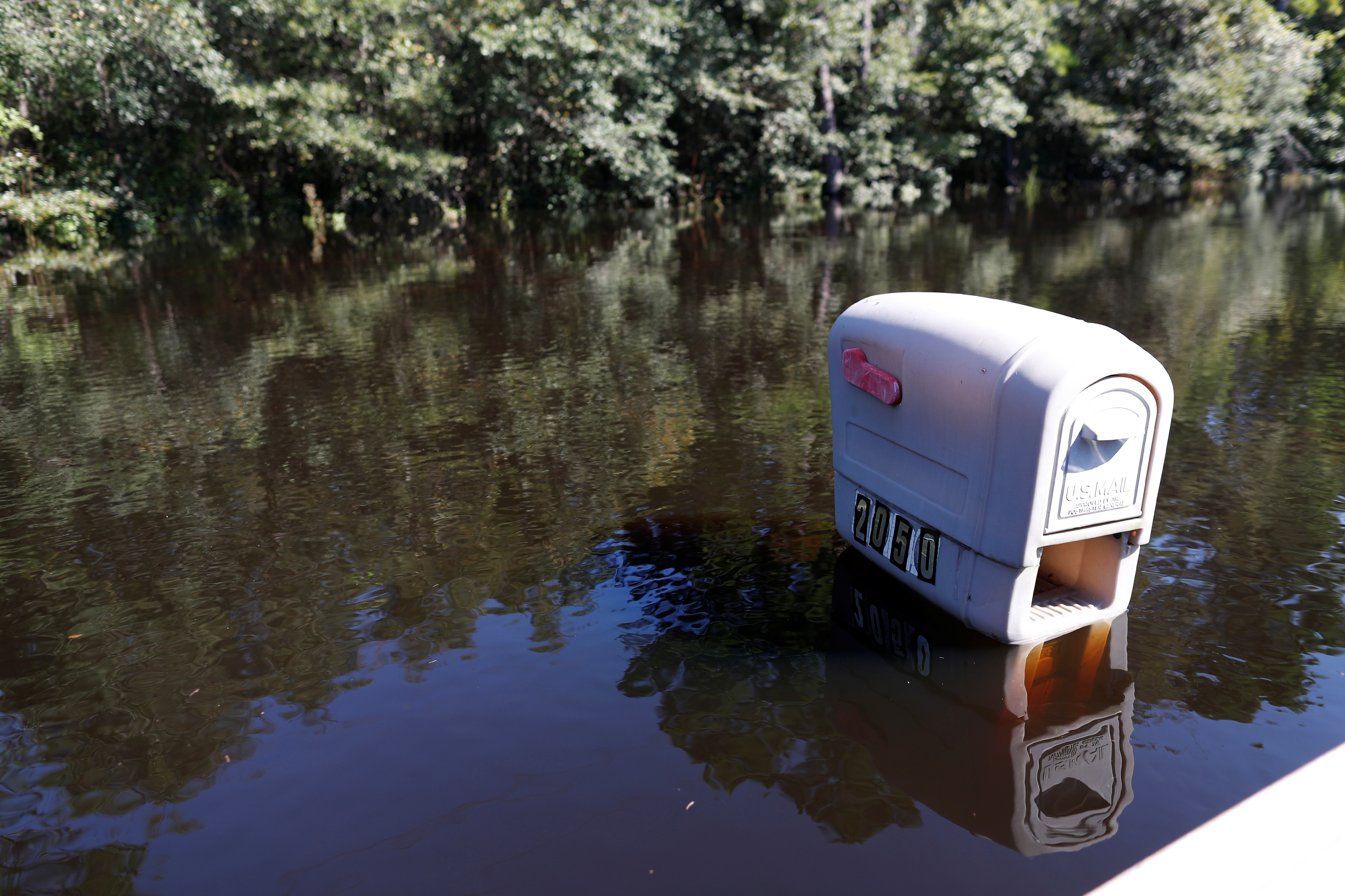 A mailbox is partially submerged by flood waters in the aftermath of Hurricane Florence in Conway, South Carolina, September 19, 2018. REUTERS/Randall Hill. REUTERS/Randall Hill