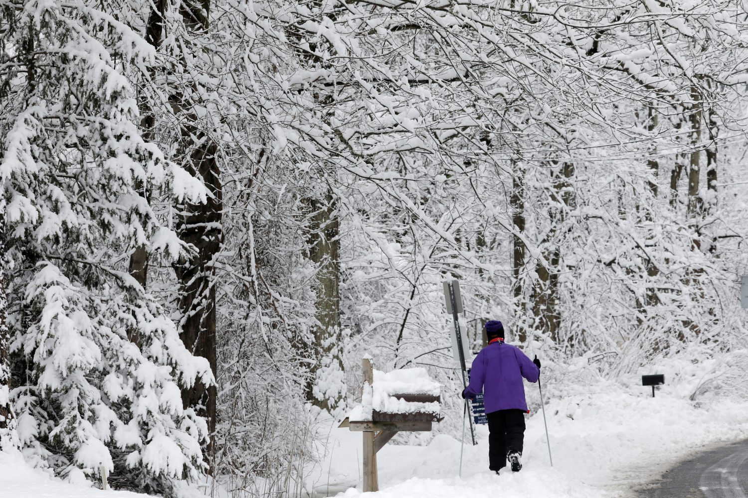 A woman makes her way through the snow on cross country skis during a winter storm in Pallisades, New York March 4, 2019. REUTERS/Mike Segar