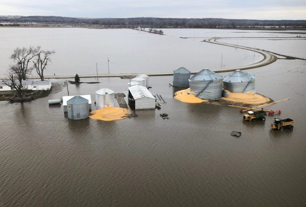 FILE PHOTO: The contents of grain silos which burst from flood damage are shown in Fremont County Iowa, U.S., March 29, 2019. REUTERS/Tom Polansek
