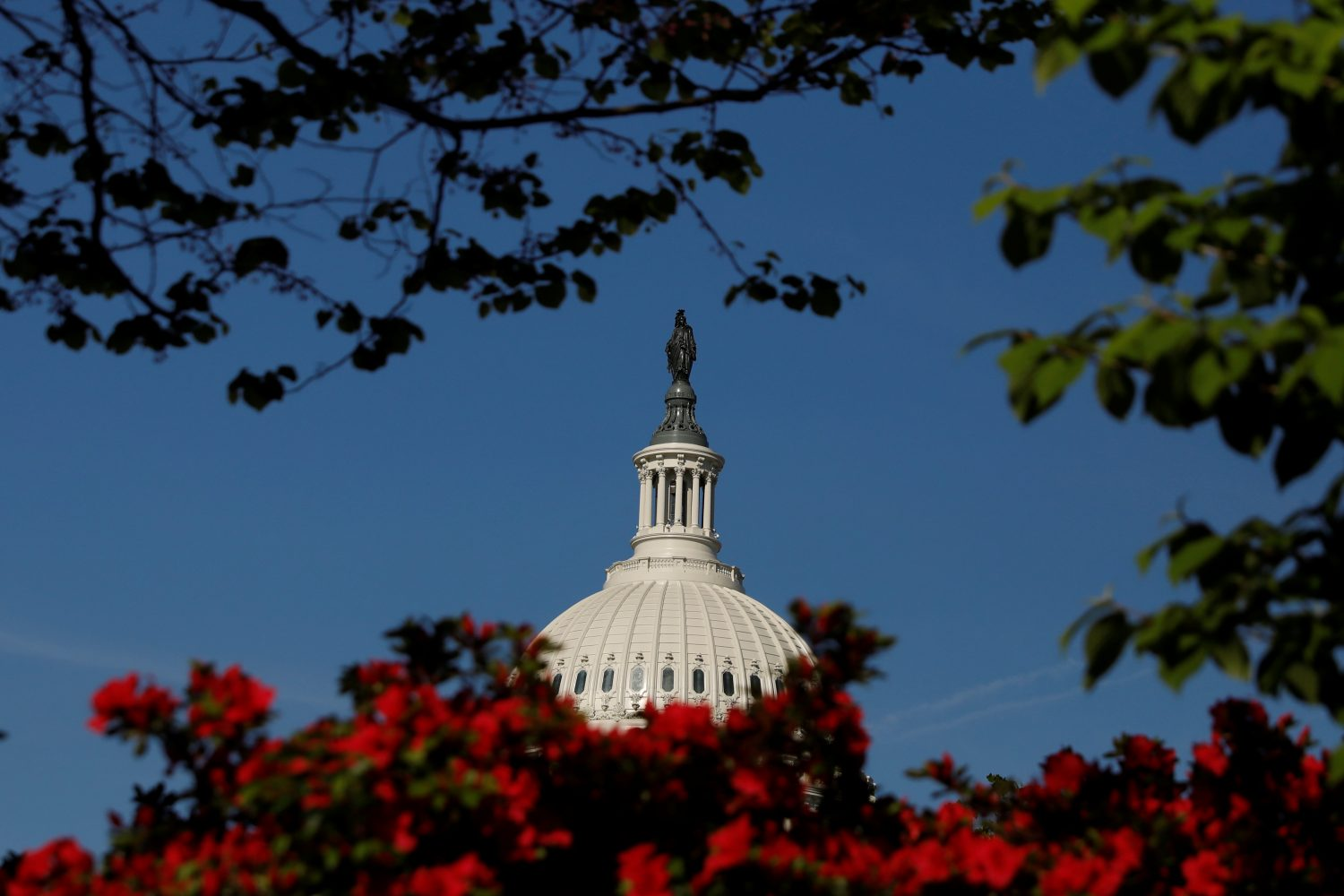 FILE PHOTO: The U.S. Capitol building is seen through flowers in Washington, U.S., April 23, 2019. REUTERS/Shannon Stapleton