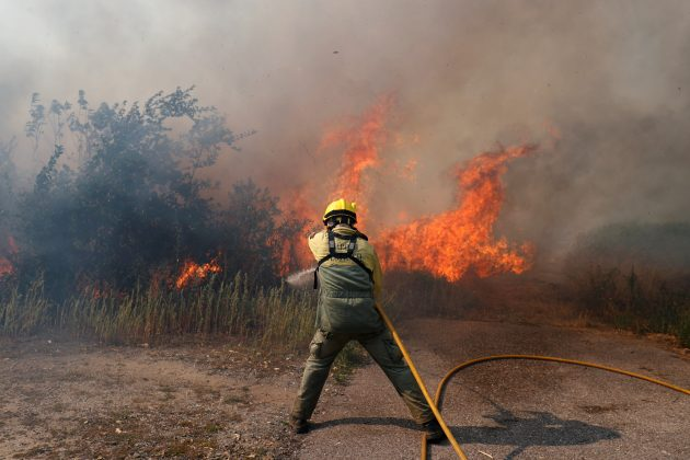 Firefighters help to put out a forest fire near the village of Vila de Rei, Portugal July 21, 2019. REUTERS/Rafael Marchante